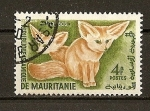 Stamps Africa - Mauritania -  Fennecs.