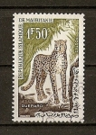 Stamps Africa - Mauritania -  Guepard.