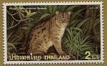 Stamps Asia - Thailand -  Gato Pescador (Bennett) en peligro de extinción