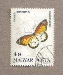 Stamps Hungary -  Mariposa Danaus chrysippus