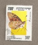 Sellos de Asia - Camboya -  Mariposa Mesoacidalia aglaja