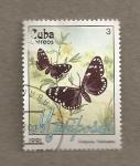 Stamps Cuba -  Mariposa Compòsia filelissima