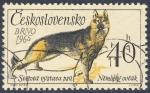 Sellos de Europa - Checoslovaquia -  Svetova vystava psu  Newecky ovcak  Brno 1965