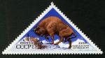 Stamps Russia -  RUSIA: Cáucaso occidental
