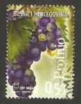 Sellos del Mundo : Europa : Bosnia_Herzegovina : 210 - fruta uva negra
