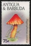 Stamps America - Antigua and Barbuda -  SETAS-HONGOS: 1.105.053,00-Hygrophorus  conicus