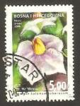 Stamps Bosnia Herzegovina -  flor