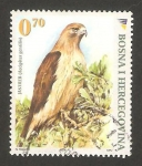 Stamps Bosnia Herzegovina -  aves, azor