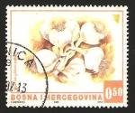 Sellos de Europa - Bosnia Herzegovina -  ajos