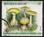 Sellos del Mundo : Europa : Bélgica : SETAS-HONGOS: 1.112.011,00-Amanita phaloides -