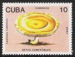 Stamps Cuba -  SETAS-HONGOS: 1.134.014,00-Lentinus cubensis