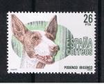 Sellos de Europa - España -  Edifil  2713   Perros de raza española