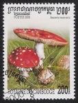 Stamps America - Cambodia -  SETAS-HONGOS: 1.124.041,00-Amanita muscaria