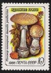 Stamps Russia -  SETAS:231.222  Amanita pantherina
