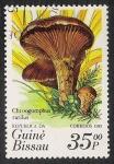 Stamps Africa - Guinea Bissau -  SETAS-HONGOS: 1.161.0006,00-Chroogomphus rutilus