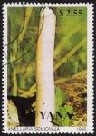 Sellos del Mundo : America : Guyana : SETAS-HONGOS: 1.162.023,00-Anellaria semiovata