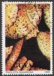 Stamps Guyana -  SETAS-HONGOS: 1.162.024,00-Pholiota squarrosa