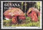 Sellos del Mundo : America : Guyana : SETAS-HONGOS: 1.162.031,00-Boletus satanas