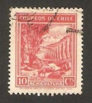 Stamps Chile -  169 - Agricultura