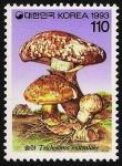 Stamps Asia - South Korea -  SETAS-HONGOS: 1.230.011,00-Tricholoma caligatum