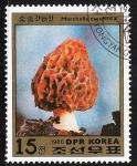Sellos de Asia - Corea del norte -  SETAS-HONGOS: 1.205.024,00-Morchella esculenta