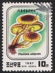 Stamps North Korea -  SETAS-HONGOS: 1.205.031,00-Pholiota adiposa