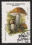 Stamps Africa - Madagascar -  SETAS-HONGOS: 1.182.006,00-Leccinum scabrum