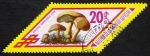 Sellos de Asia - Mongolia -  SETAS-HONGOS: 1.192.011,00-Boletus variegatus