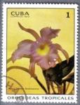 Stamps America - Cuba -  Orquideas tropicales