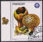 Stamps Paraguay -  SETAS-HONGOS: 1.209.008,00-Scleroderma verrucosum