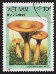 Stamps Vietnam -  SETAS:261.011  Clitocybe geotropa