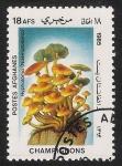 Stamps Asia - Afghanistan -  SETAS-HONGOS: 1.100.006,01-Hypolóma (Naematolóma) -Dm.985.35-Y&T1281-Mch.1416-Sc.1170