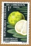 Stamps Africa - Cameroon -  Frutas - Citrus grandis