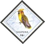 Sellos de Europa - Albania -  ave, bombycila garrulus