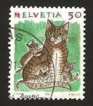 Stamps Switzerland -  1342 - gatos
