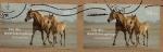 Stamps Germany -  Caballos - sobretasa para organizaciones de beneficencia