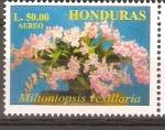 Stamps Honduras -  MILTONIOPSIS  VEXILLARIA
