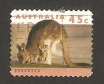 Stamps : Oceania : Australia :  canguro y cachorro