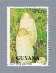 Stamps : America : Guyana :  Corinus Comatus