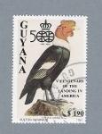 Stamps America - Guyana -  Pájaro Vultur Feriphus