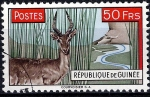 Sellos de Africa - Guinea -  Antílope.