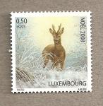 Sellos de Europa - Luxemburgo -  Navidad 2008