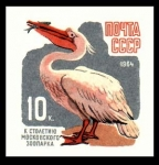 Stamps Europe - Russia -  pericano