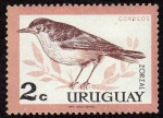 Stamps America - Uruguay -  pajaros de Uruguay ··ZORZAL