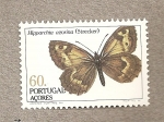 Stamps Portugal -  Azore, mariposa Hipparchia
