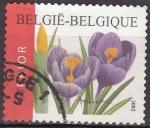 Stamps Belgium -  BELGICA 2002 Scott 1937 Sello Flores Crocuses Usado Michel 3191