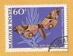 Sellos de Europa - Hungría -  Mariposa, Smerinthus ocellatus