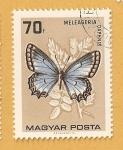 Stamps Hungary -  Mariposa, Meleageria daphnis