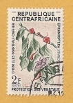 Stamps Africa - Central African Republic -  Orugas del cafetero
