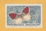 Sellos de Africa - Madagascar -  Mariposa, Colotis zoe